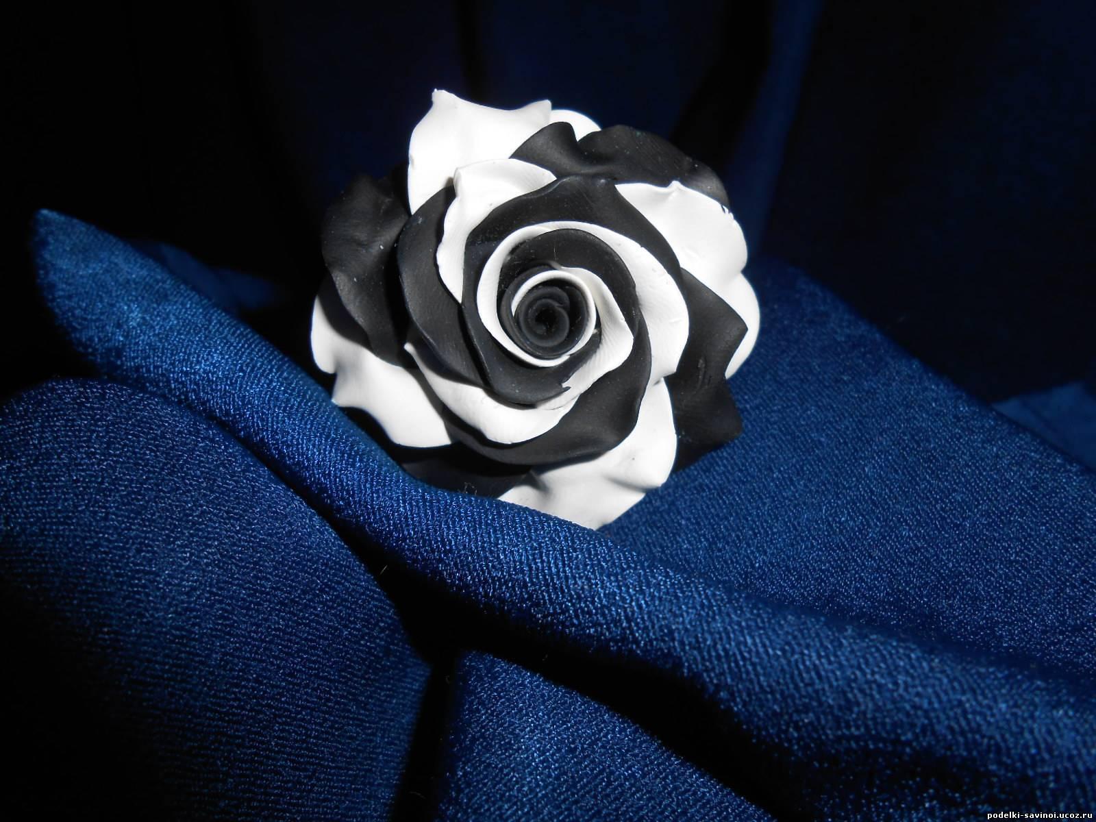 Как из белой розы сделать черную